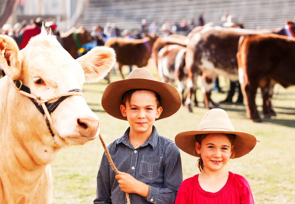 win eke tickets kids with cow at agricultural show